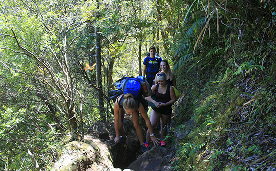 Hiking the pinnacles with New Zealand Internships