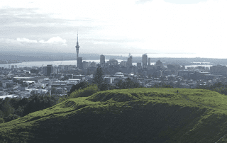 Panoramic-view-over-Auckland-during-an-internship-in-NZ