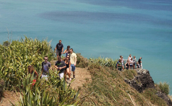 Piha day trip New Zealand
