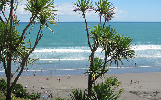 Surf weekend trip New Zealand Internships