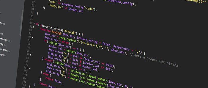 Web Developer work experience in New Zealand